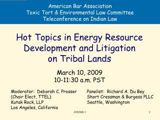 American Bar Association Toxic Tort & Environmental Law Committee Teleconference on Indian Law