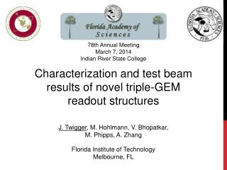 Characterization and test beam results of novel triple-GEM  readout structures