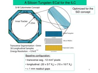 A Silicon-Tungsten ECal for the ILC