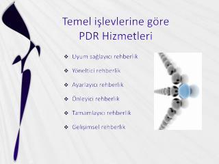 Temel işlevlerine göre  PDR Hizmetleri