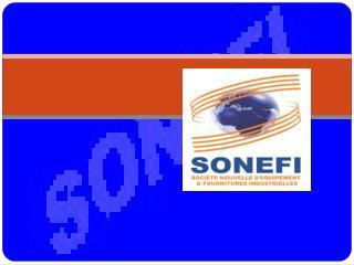 Présentation de la SONEFI Forme juridique : SARL Date de création  : 1996
