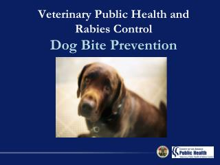 Veterinary Public Health and Rabies Control  Dog Bite Prevention