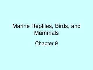 Marine Reptiles, Birds, and Mammals