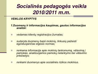 S ocialinės pedagogės veikla 2010/2011 m.m.