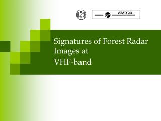 Signatures of Forest Radar Images at VHF-band