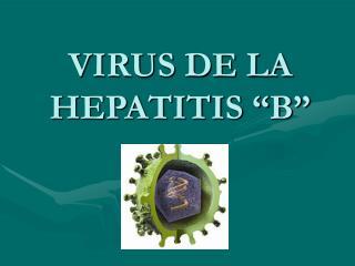"""VIRUS DE LA HEPATITIS """"B"""""""