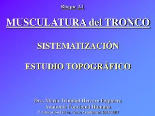 MUSCULATURA del TRONCO SISTEMATIZACIÓN ESTUDIO TOPOGRÁFICO