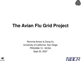 The Avian Flu Grid Project