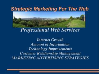 Strategic Marketing For The Web