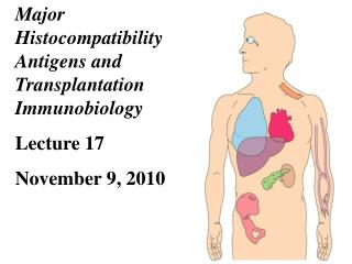 Major Histocompatibility Antigens and Transplantation  Immunobiology Lecture 17  November 9, 2010