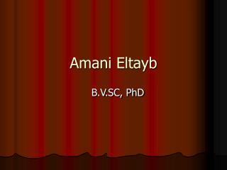 Amani Eltayb