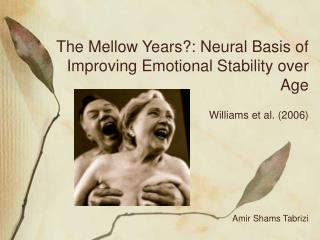 The Mellow Years?: Neural Basis of Improving Emotional Stability over Age