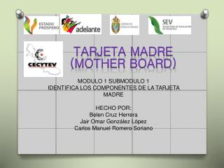 Tarjeta madre (mother board)