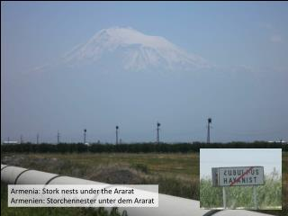 Armenia: Stork nests under the Ararat Armenien: Storchennester unter dem Ararat