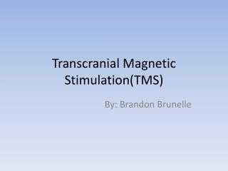 Transcranial Magnetic StimulationTMS
