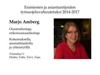 Esimiesten ja asiantuntijoiden työsuojeluvaltuutetuksi 2014-2017