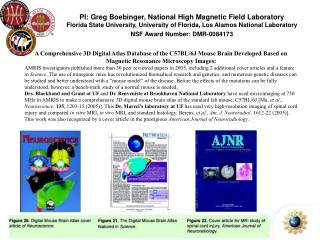 A Comprehensive 3D Digital Atlas Database of the C57BL/6J Mouse Brain Developed Based on