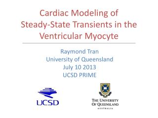 Cardiac Modeling of  Steady-State Transients in the Ventricular Myocyte