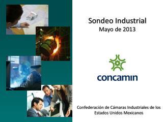 Sondeo  Industrial Mayo de 2013