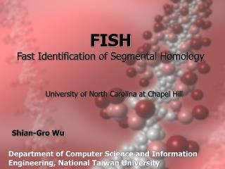 FISH Fast Identification of Segmental Homology