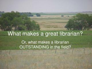 What makes a great librarian?