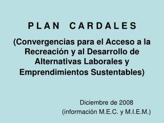 Diciembre de 2008  (información M.E.C. y M.I.E.M.)