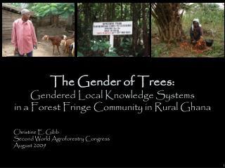 Christine E. Gibb Second World Agroforestry Congress August 2009