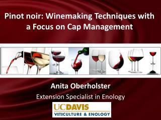 Anita Oberholster Extension Specialist in Enology
