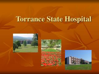 Torrance State Hospital