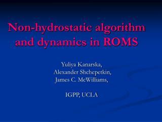 Non-hydrostatic algorithm and dynamics in ROMS