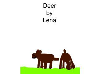 Deer by Lena