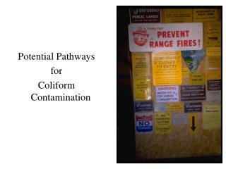 Potential Pathways for  Coliform Contamination
