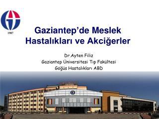 Gaziantep'de Meslek Hastalıkları ve Akciğerler