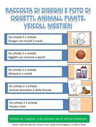 RACCOLTA DI DISEGNI E FOTO DI OGGETTI, ANIMALI, PIANTE,  VEICOLI, MESTIERI
