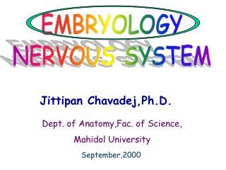 Jittipan Chavadej,Ph.D.