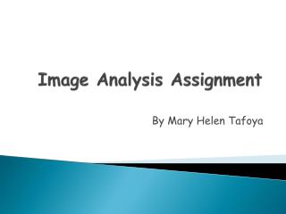 Image Analysis Assignment