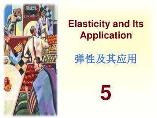 Elasticity and Its Application 弹性及其应用