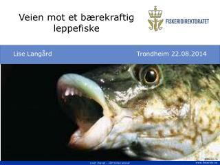 Veien mot et bærekraftig leppefiske