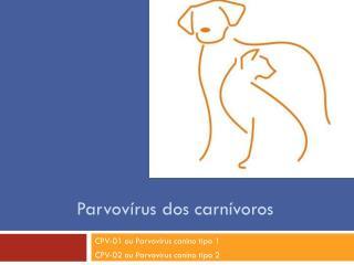 Parvovírus dos carnívoros