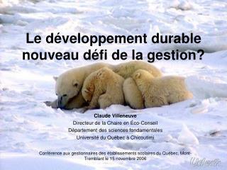 Le développement durable nouveau défi de la gestion?