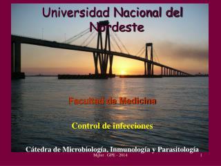 Universidad Nacional del Nordeste Facultad de Medicina Control de infecciones