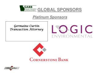 GLOBAL SPONSORS Platinum Sponsors