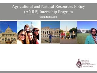 Agricultural and Natural Resources Policy (ANRP) Internship Program