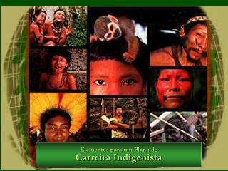 Elementos para um Plano de Carreira Indigenista