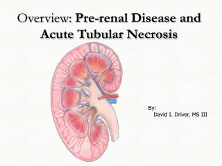 Overview: Pre-renal Disease and Acute Tubular Necrosis