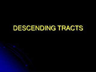 DESCENDING TRACTS