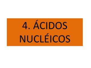 4. ÁCIDOS NUCLÉICOS