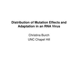 Distribution of Mutation Effects and Adaptation in an RNA Virus