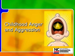 Childhood Anger and Aggression