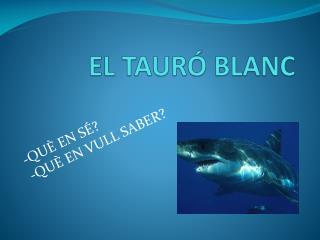 EL TAUR� BLANC